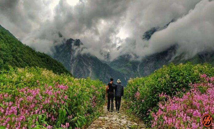 Valley-of-flowers-trek